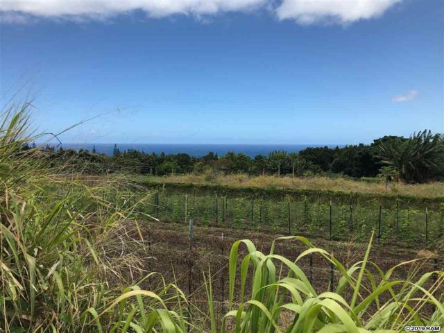 2431 S Kamaile St, Wailuku, HI 96793 (MLS #383227) :: Maui Estates Group