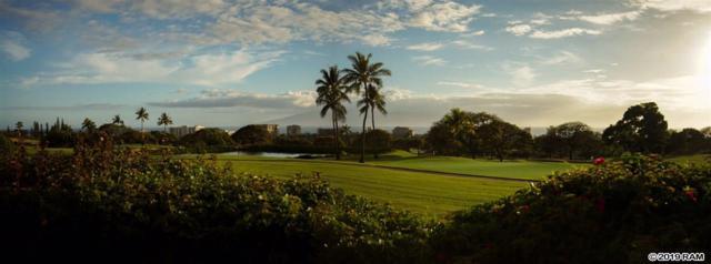 129 Kualapa Pl #29, Lahaina, HI 96761 (MLS #383262) :: Maui Estates Group