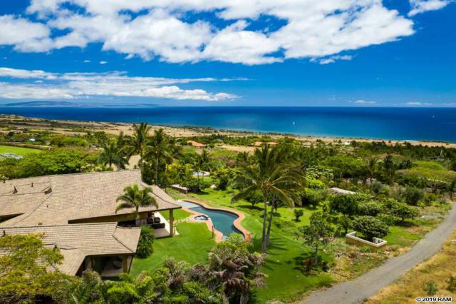 80 Lau Awa Pl, Lahaina, HI 96761 (MLS #383334) :: Elite Pacific Properties LLC