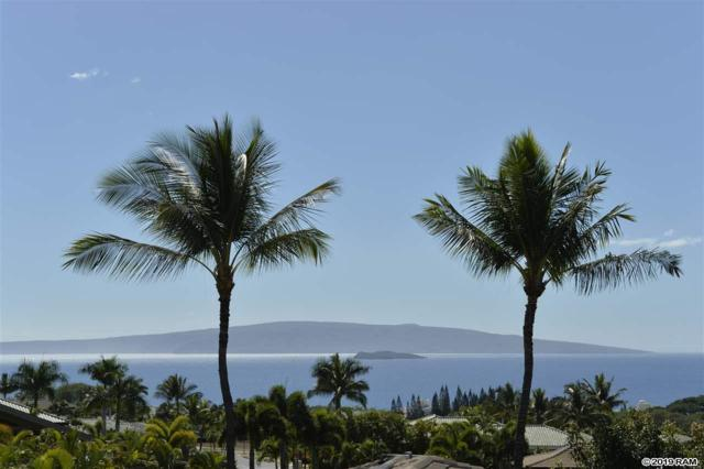 3981 Wailea Ekolu Pl, Kihei, HI 96753 (MLS #383399) :: Maui Estates Group