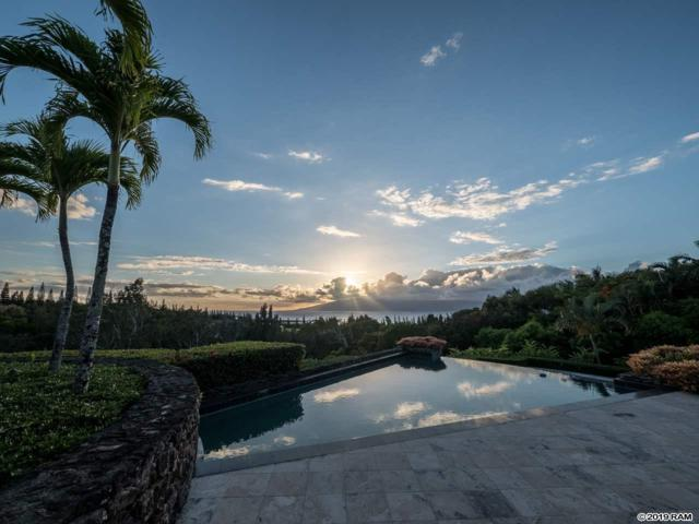 229 Plantation Club Dr, Lahaina, HI 96761 (MLS #383493) :: Elite Pacific Properties LLC