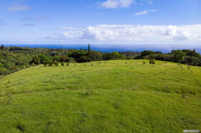 0 Hana Hwy, Haiku, HI 96708 (MLS #383602) :: Coldwell Banker Island Properties
