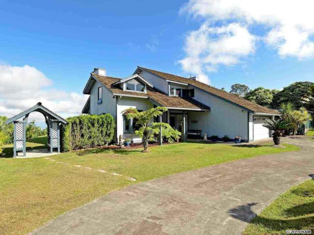 1009 Lower Kimo Dr, Kula, HI 96790 (MLS #383629) :: Coldwell Banker Island Properties