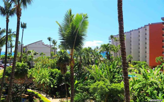 3445 Lower Honoapiilani Rd #435, Lahaina, HI 96761 (MLS #383647) :: Elite Pacific Properties LLC