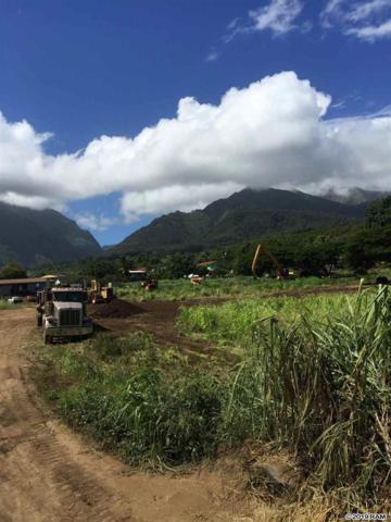 1504 Piihana Rd, Wailuku, HI 96793 (MLS #383692) :: Maui Lifestyle Real Estate