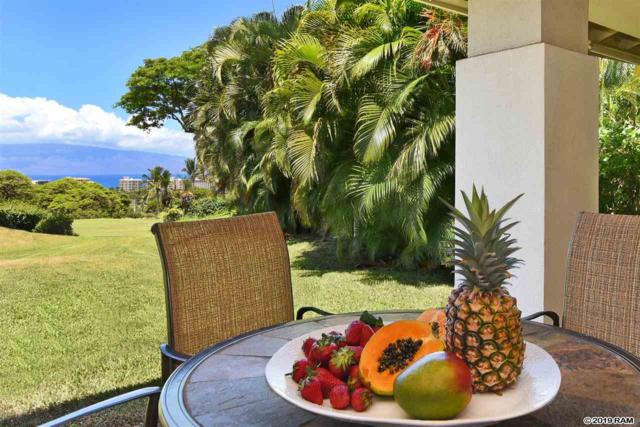 119 Kualapa Pl #19, Lahaina, HI 96761 (MLS #383754) :: Maui Lifestyle Real Estate