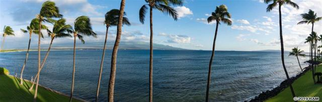 Wailuku, HI 96793 :: Elite Pacific Properties LLC
