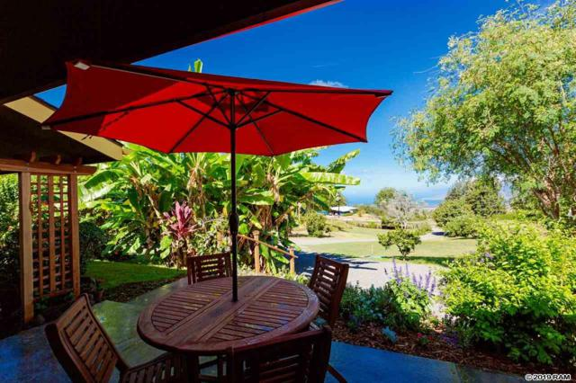 718 Holopuni Rd, Kula, HI 96790 (MLS #383877) :: Maui Estates Group