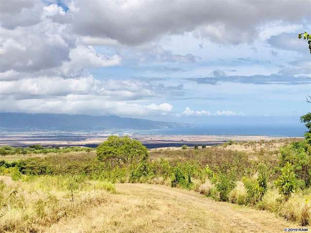 1990 Omaopio Rd, Kula, HI 96790 (MLS #384307) :: Elite Pacific Properties LLC