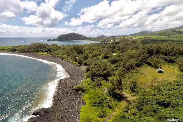 0 Waikoloa Rd, Hana, HI 96713 (MLS #384425) :: Coldwell Banker Island Properties