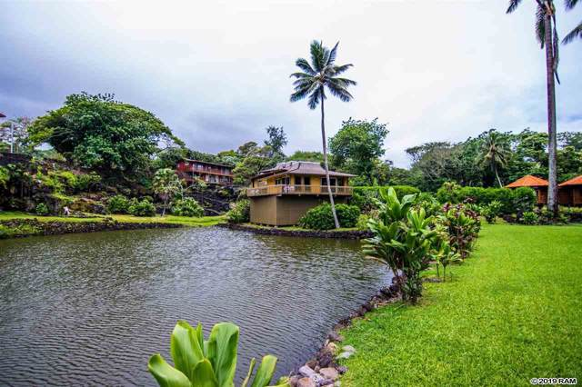134 Waikoloa Rd, Hana, HI 96713 (MLS #384555) :: Elite Pacific Properties LLC