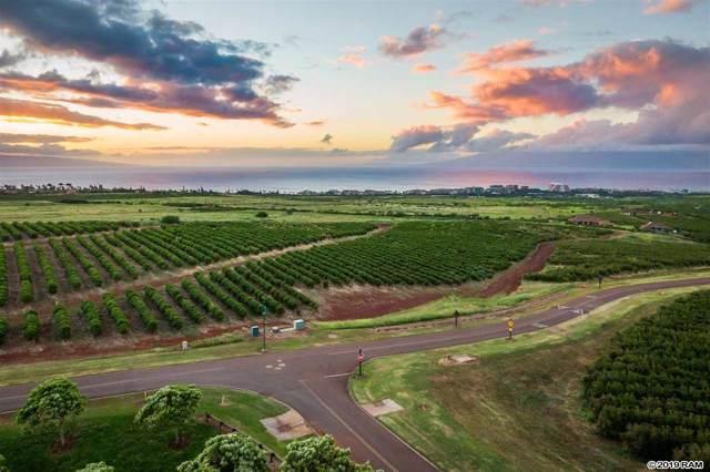 517 Oka Kope St Lot 3, Lahaina, HI 96761 (MLS #385179) :: Maui Estates Group