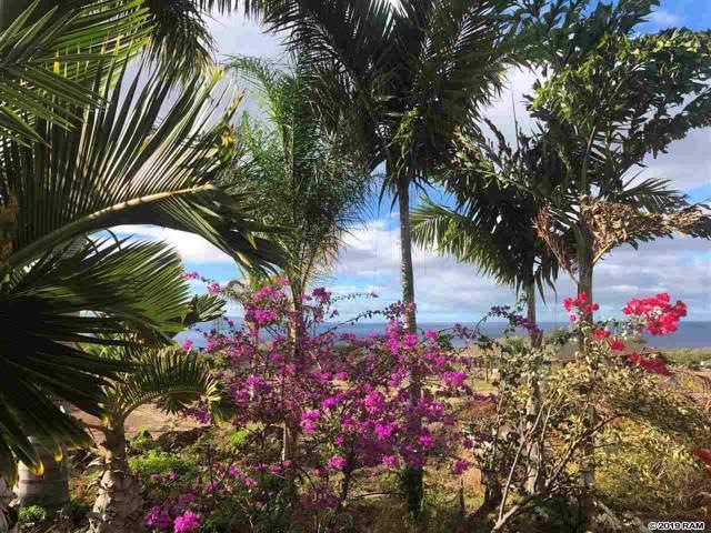 399 Ulua Rd #169, Kaunakakai, HI 96748 (MLS #385374) :: Coldwell Banker Island Properties