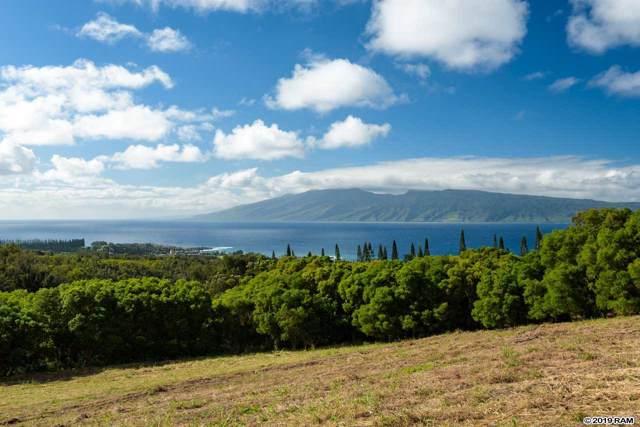 138 Keoawa St, Lahaina, HI 96761 (MLS #385397) :: Maui Estates Group