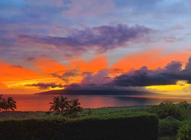 1033 Kai Hele Ku St #14, Lahaina, HI 96761 (MLS #385620) :: Maui Estates Group