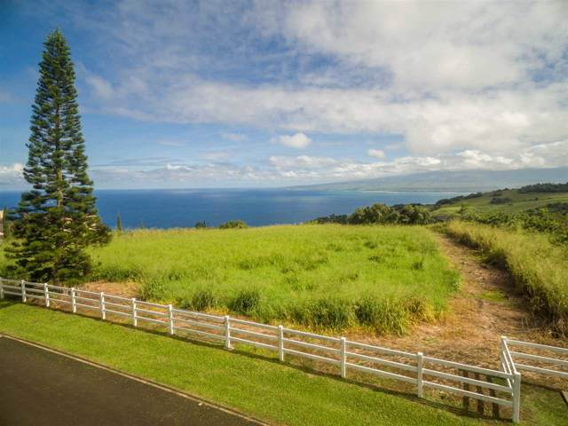 19 Lahaole Pl, Wailuku, HI 96793 (MLS #385674) :: Maui Estates Group