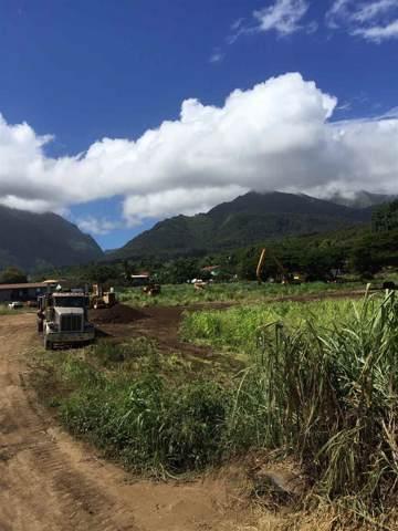 0000 Piihana Rd, Wailuku, HI 96793 (MLS #385744) :: Maui Estates Group