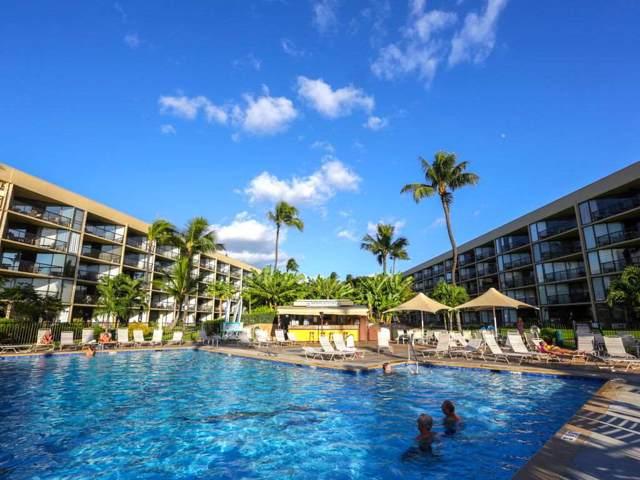 1032 Kihei Rd B202, Kihei, HI 96753 (MLS #385798) :: Maui Estates Group