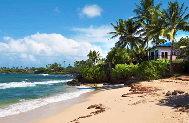 459 Hana Hwy, Paia, HI 96779 (MLS #385806) :: Elite Pacific Properties LLC