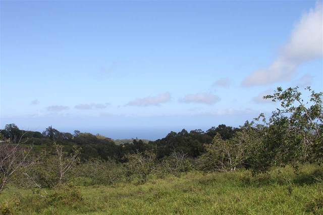 1086 Upper Ulumalu Rd, Haiku, HI 96708 (MLS #385961) :: Maui Estates Group