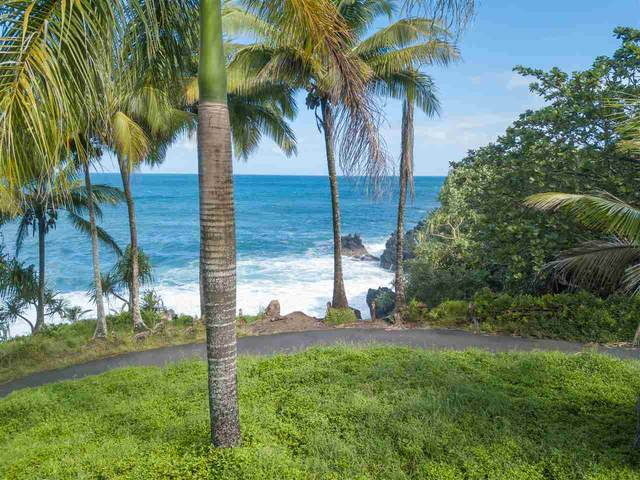 0 Nahiku Rd, Hana, HI 96713 (MLS #386176) :: Team Lally