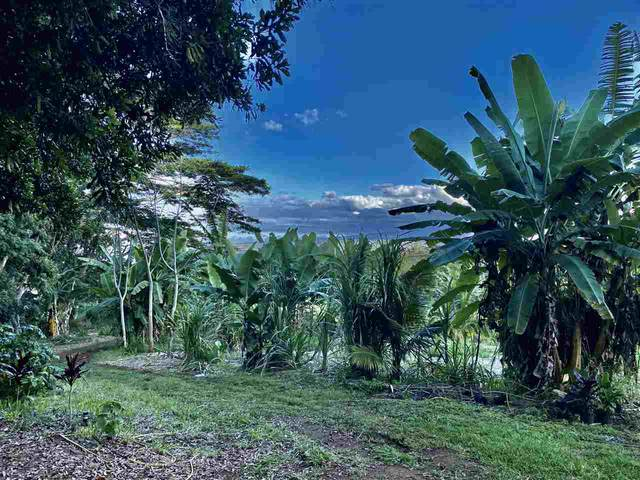 0 Malaihi Rd, Wailuku, HI 96793 (MLS #386457) :: Maui Estates Group
