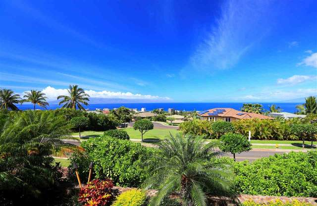 392 Wekiu Pl, Lahaina, HI 96761 (MLS #386537) :: Team Lally
