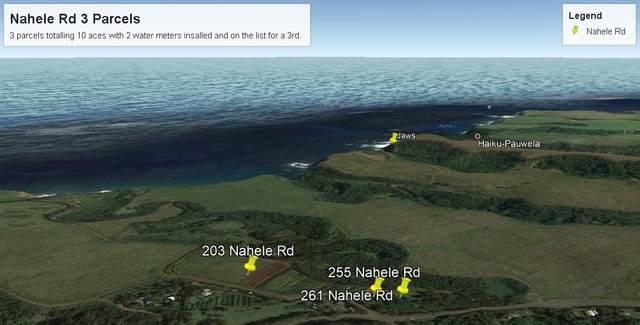 203 Nahele Rd, Haiku, HI 96708 (MLS #386626) :: Elite Pacific Properties LLC