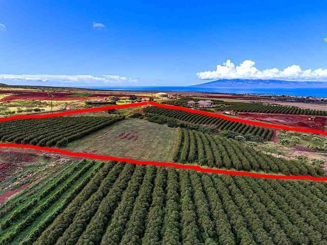 100 Aina Mahiai St Lot 51, Lahaina, HI 96761 (MLS #386636) :: Maui Estates Group