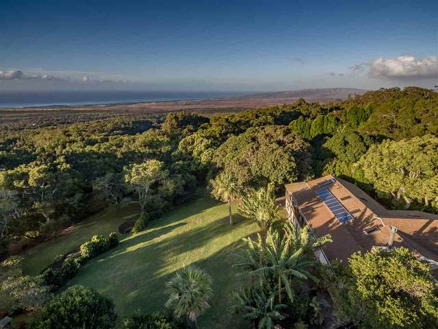 1775 Kalae Hwy, Kualapuu, HI 96757 (MLS #386743) :: Elite Pacific Properties LLC