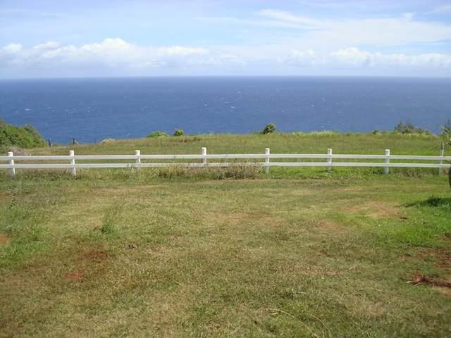 3650 Kahekili Hwy 1-A-1, Wailuku, HI 96793 (MLS #386946) :: Maui Estates Group