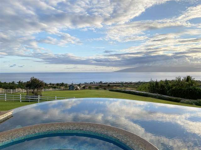 65 Wili Okai Way, Lahaina, HI 96761 (MLS #387117) :: Maui Estates Group
