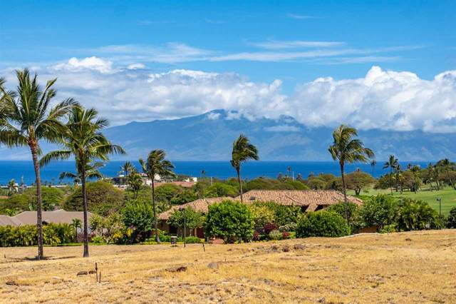 46 Kaulele Pl Lot 42 Phase 1, Lahaina, HI 96761 (MLS #387161) :: Maui Estates Group