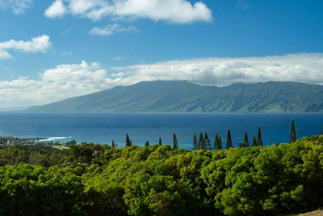 138 Keoawa St, Lahaina, HI 96761 (MLS #387189) :: Maui Estates Group