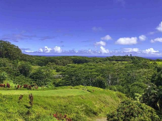 3969 Lepo St, Haiku, HI 96708 (MLS #387259) :: Maui Estates Group
