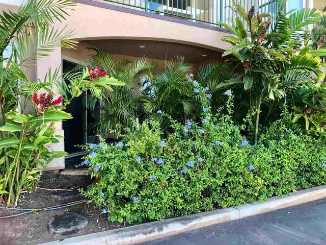 44 Kanani Rd 4-102, Kihei, HI 96753 (MLS #387321) :: Maui Estates Group