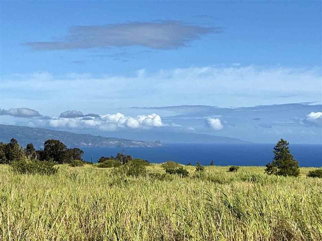 2450 Baldwin Ave Lot 8 Unit A&B, Makawao, HI 96768 (MLS #387488) :: Maui Lifestyle Real Estate