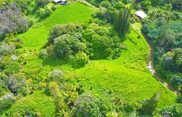 45 Honokaupu Pl, Haiku, HI 96708 (MLS #387528) :: Maui Estates Group