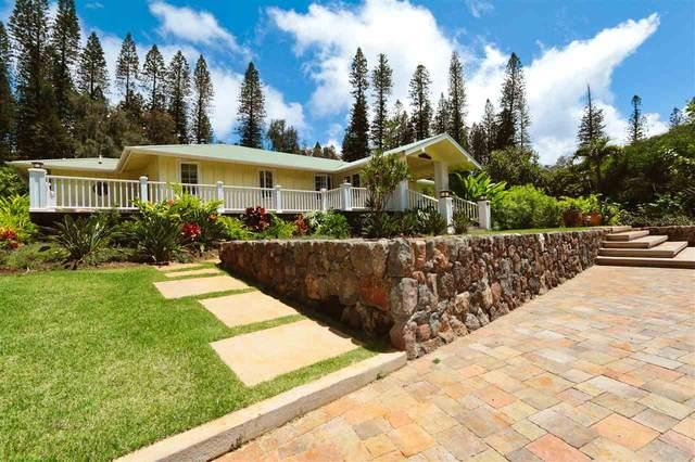 438 Hau Dr, Lanai City, HI 96763 (MLS #387625) :: Elite Pacific Properties LLC