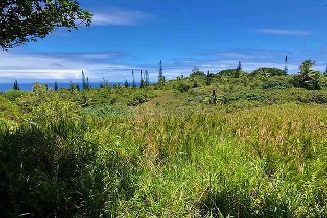 120 Hoolawa Rd, Haiku, HI 96708 (MLS #387745) :: Maui Estates Group