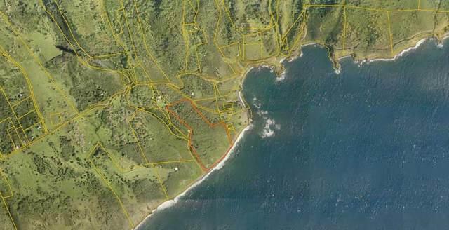 0 Piilani Hwy, Hana, HI 96779 (MLS #387845) :: Coldwell Banker Island Properties