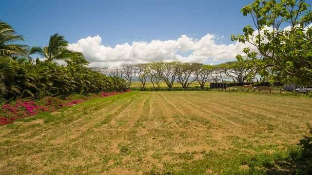 0 Kapukaulua Pl, Paia, HI 96779 (MLS #388084) :: Keller Williams Realty Maui