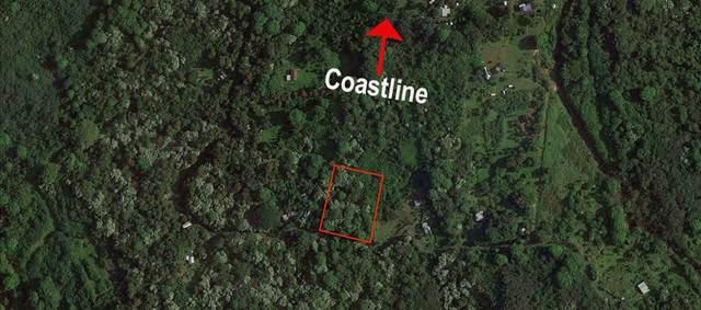 Nahiku Rd, Hana, HI 96713 (MLS #388161) :: Maui Estates Group