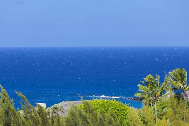 100 Ridge Rd #514, Lahaina, HI 96761 (MLS #388190) :: Maui Lifestyle Real Estate