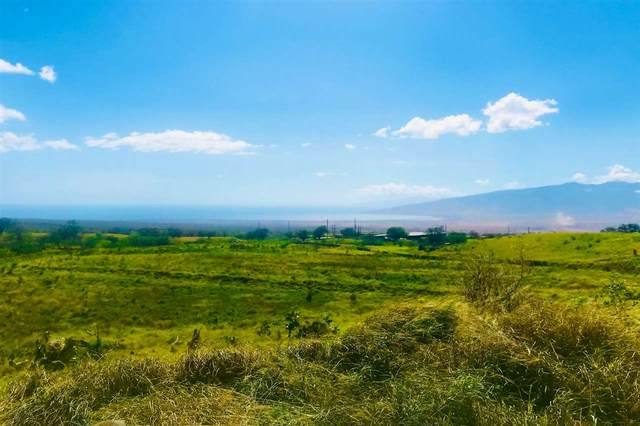 1900 Pulehu Rd, Kula, HI 96790 (MLS #388427) :: Maui Lifestyle Real Estate