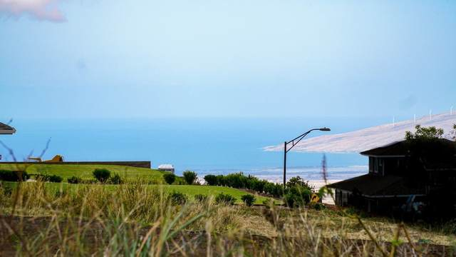 4 Lilinoe Pl, Makawao, HI 96768 (MLS #388444) :: Maui Estates Group
