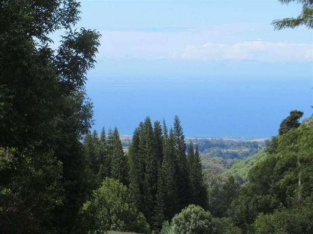 0 Kahakapao Rd 133-A, Makawao, HI 96768 (MLS #388586) :: Corcoran Pacific Properties