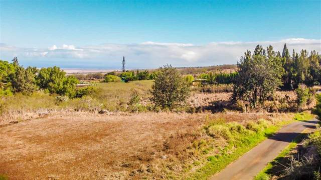 45 Ahinahina Pl, Kula, HI 96790 (MLS #388724) :: Maui Lifestyle Real Estate