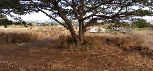 1771 Piihana Rd, Wailuku, HI 96793 (MLS #388952) :: Coldwell Banker Island Properties