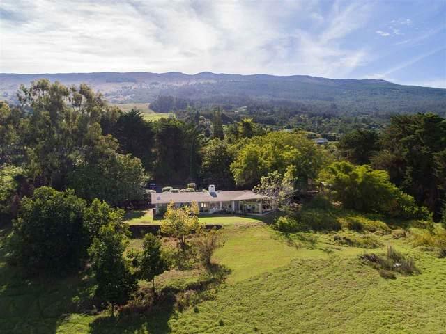 481 Ihe Pl, Kula, HI 96790 (MLS #389012) :: Coldwell Banker Island Properties